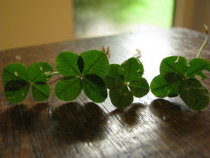 Luck is really focus, courage, and persistence.